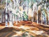 Autumn in Grasswoods