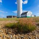 Lighthouse, Hirst Castle