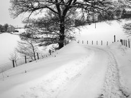 Winter at Reservoir House, Jan. 2010.