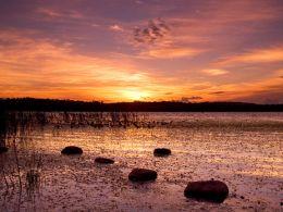 Llangorse Lake Sunset.