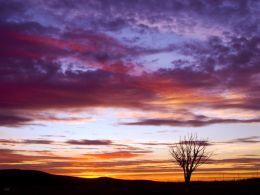 Llangynidr Moors Sunset Silhouette.