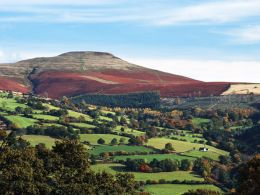 Autumn, The Sugar Loaf.