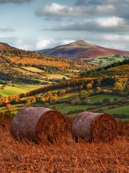 Autumn, The Sugar Loaf Mountain.