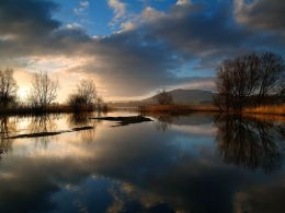 Tranquil Dawn.Llangorse Lake.