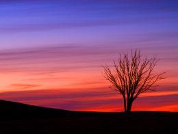 Sunset, Llangynidr Moors.