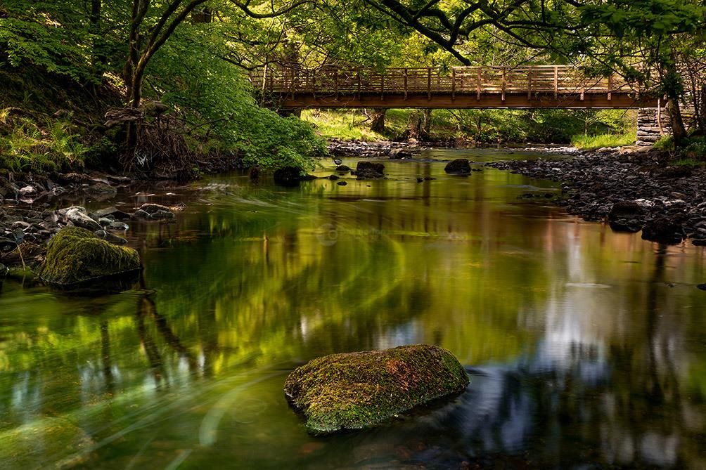 Rydale Water Bridge