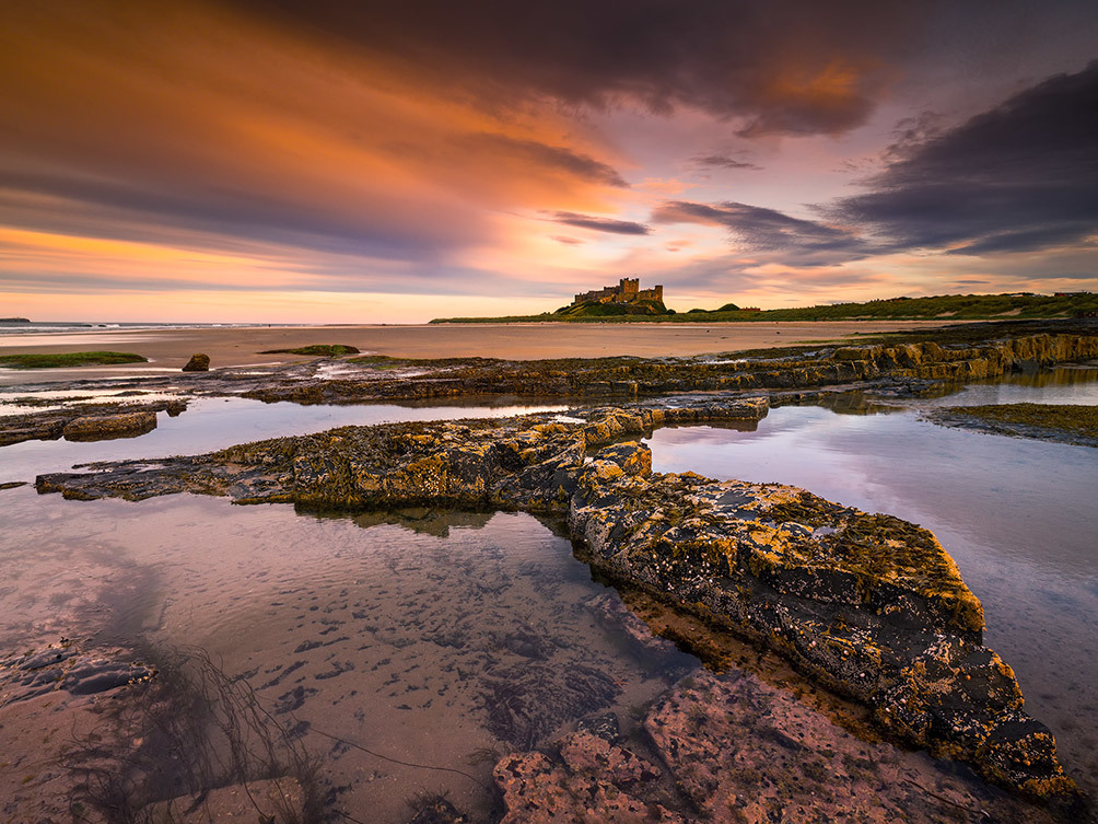Bamburgh Mermaids Tail