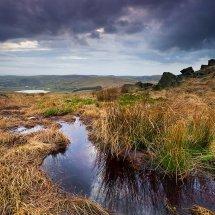 The Brook-Castleshaw Moor