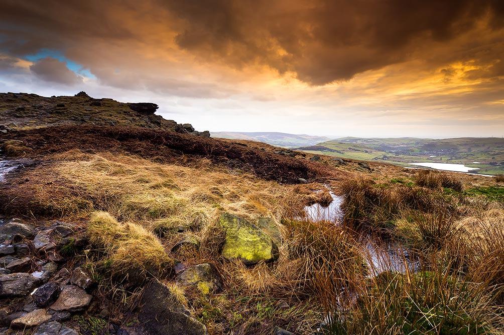 The Brook-Castleshaw Moor II