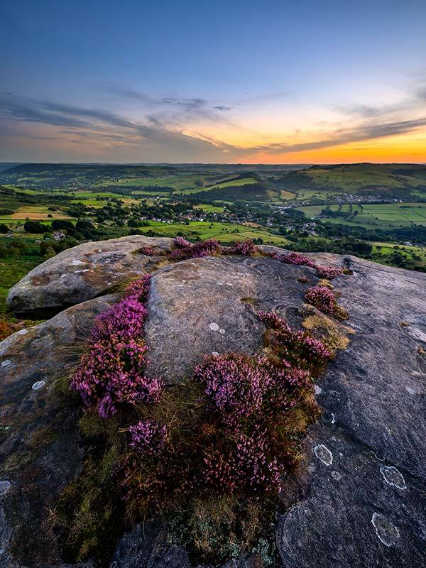 Ring Of Heather