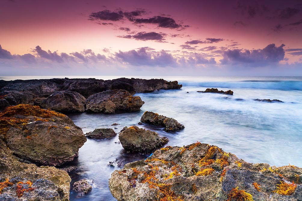 Dawn On The Peninsula II