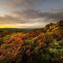 stiperstones-heather-sunset-1