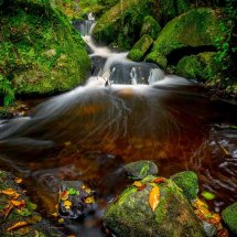 The Autumnal Brook II