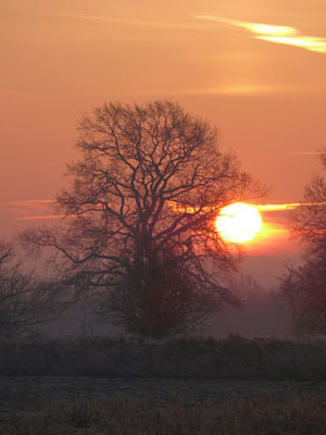 Lincoln Morning (1)