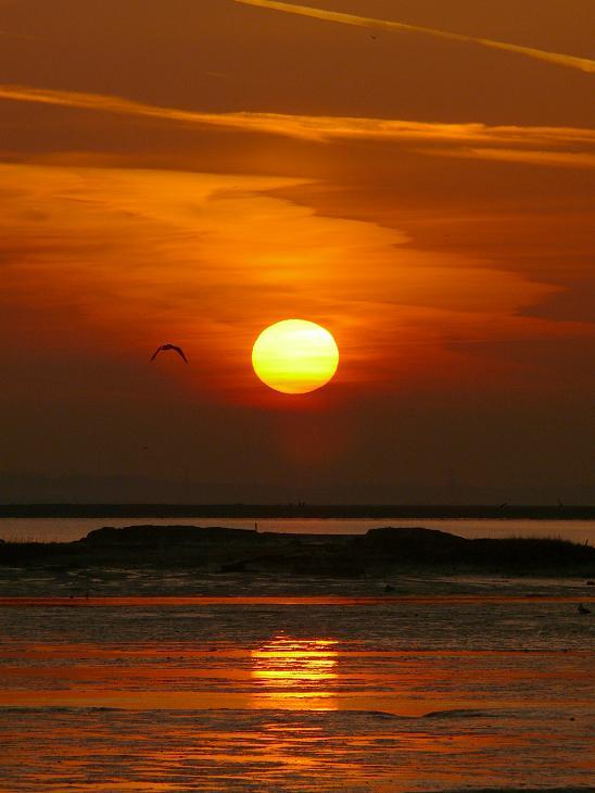Sunrise 28.3.12 (7)