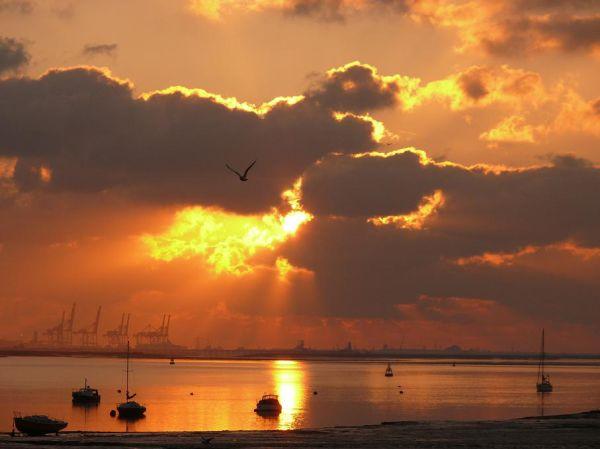 Sunrise 4.5.11 (2)