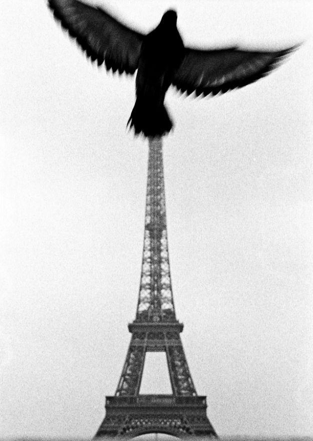 Paris, not London