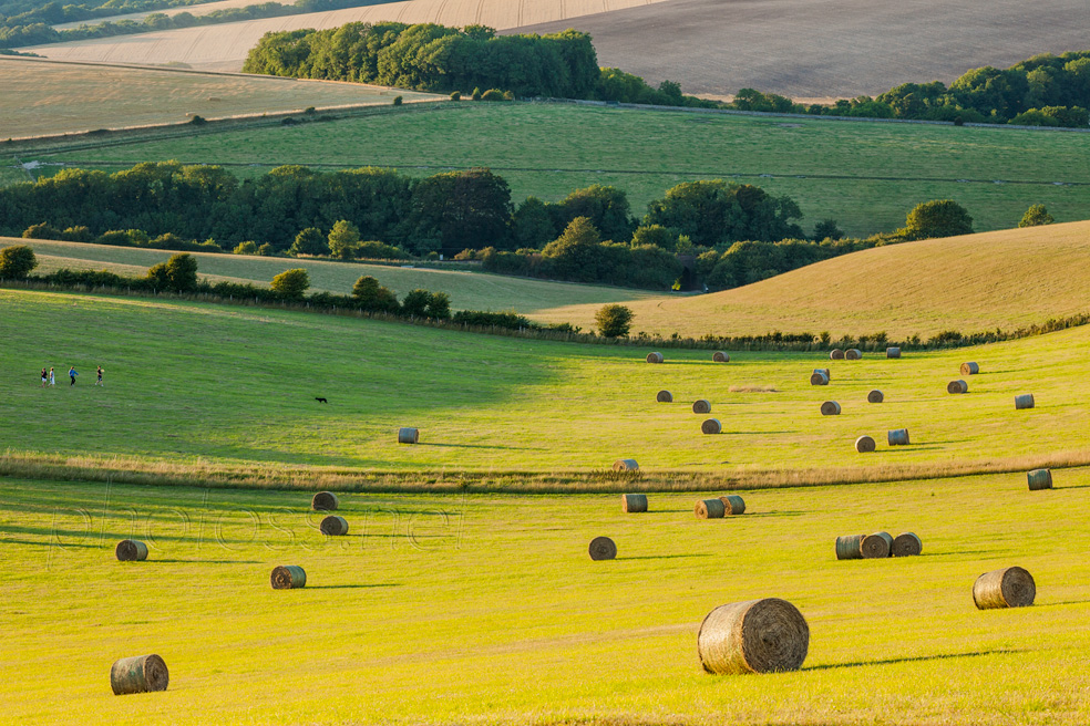 Hay Bales on the South Downs