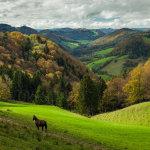Autumn afternoon in Jura Mountains