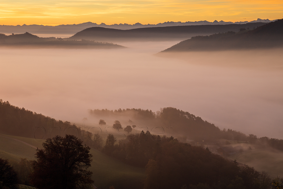Dawn in Jura Mountains
