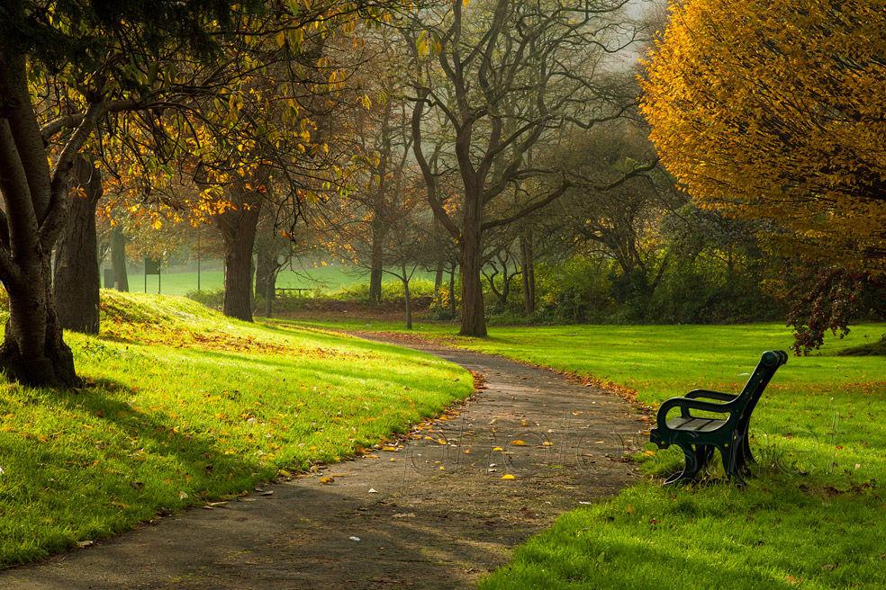 Autumn in Brighton