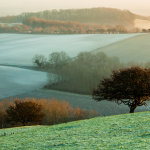 Frosty morning on the South Downs
