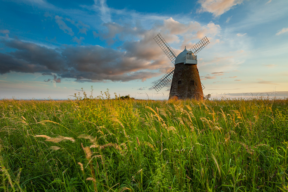 Halnaker Windmill at sunset
