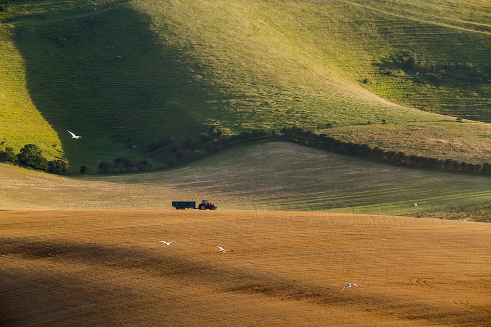 Summer on the South Downs near Lewes
