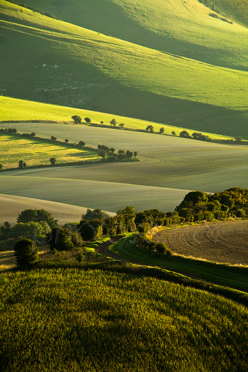 Summer afternoon on the South Downs in East Sussex