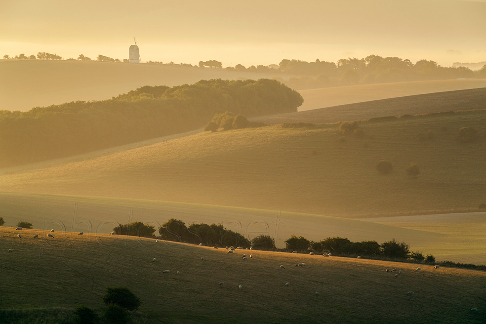 Early autumn morning on the South Downs
