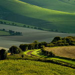 Spring on the South Downs in East Sussex