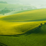 Early morning on the South Downs in Sussex