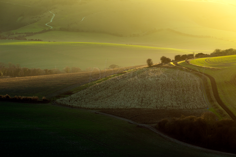 Winter evening on the South Downs in East Sussex