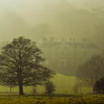 Hazy winter afternoon in Stanmer