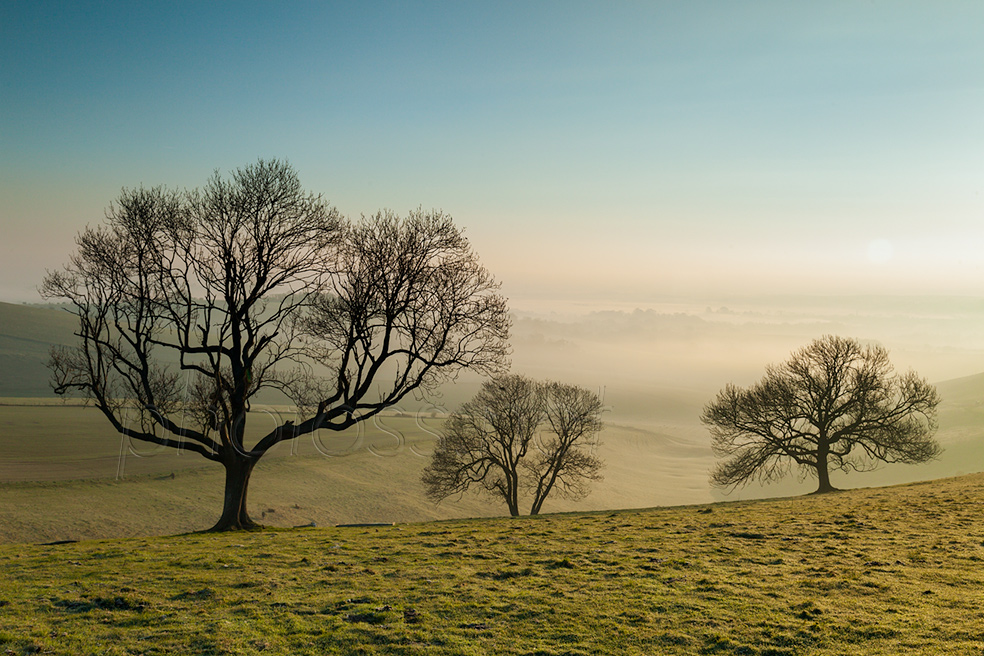 Misty spring morning on the South Downs in West Sussex
