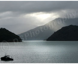 Marlborough Sounds 2