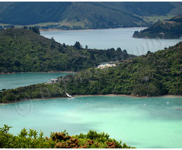 Marlborough Sounds