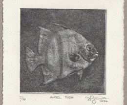 Angel Fish 2