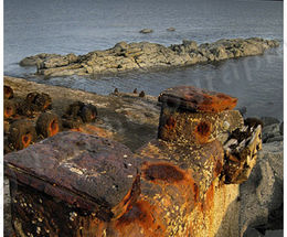 Mulberry Harbour Remains