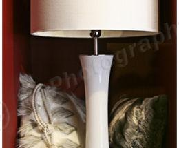 Lamp & Cushions