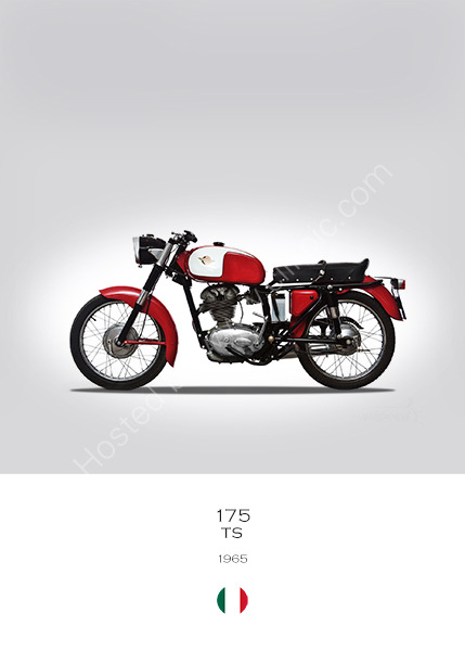 Ducati 175 TS 1965