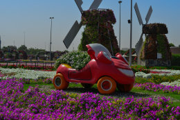 Windmills and Car with flowers