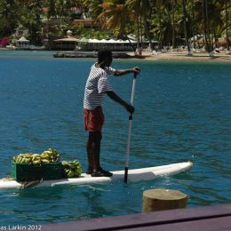 Bananas for the yachts .Margot bay St Lucia