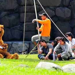 Film Crew and Bear