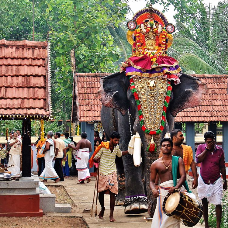 Elephant Procession in a temple