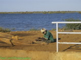 Fisherman preparing his nets.