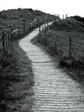 Climping Dunes Walkway