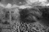 Croyde Bay Dunes.....