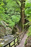 ...Glen Path