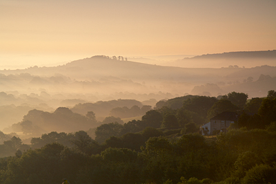 A Golden Morning Near Lyme Regis